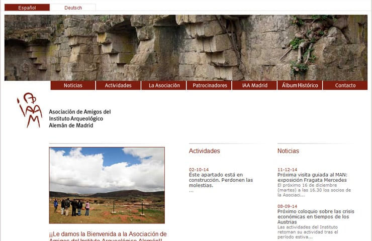 amigos dai website development