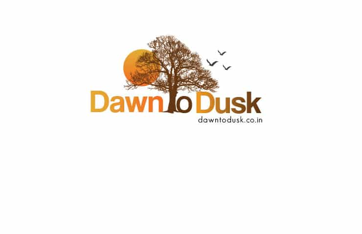 Logo design for dawn to dusk