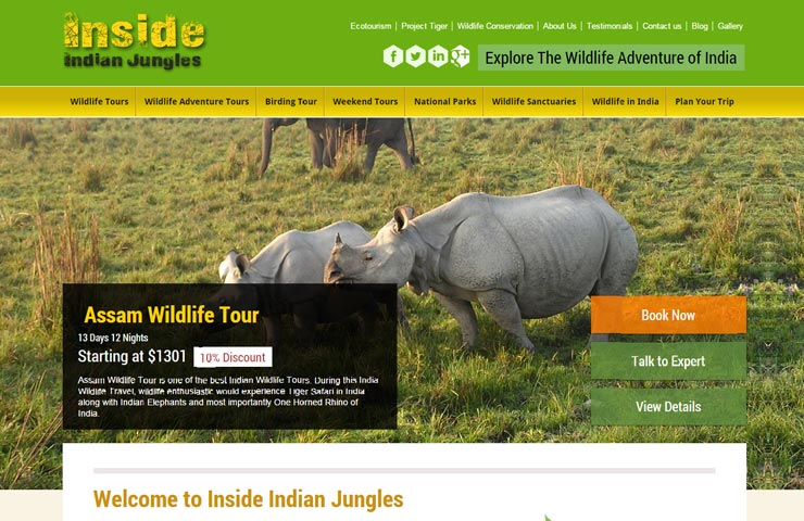 Travel Website Design With Wordpress