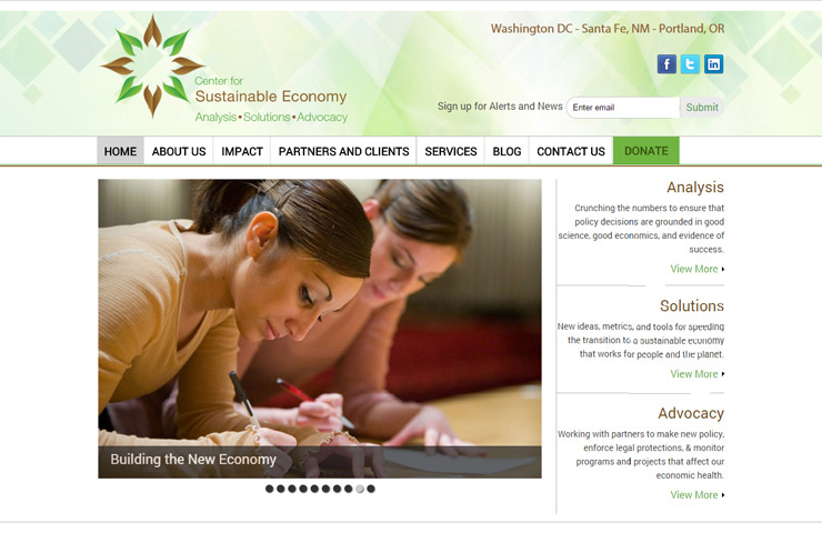 Wordpress Web Development to sustainable economy